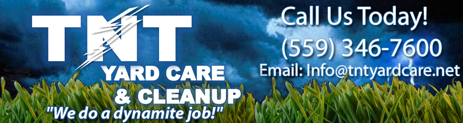 T-N-T Yard Care and Clean-Up Services